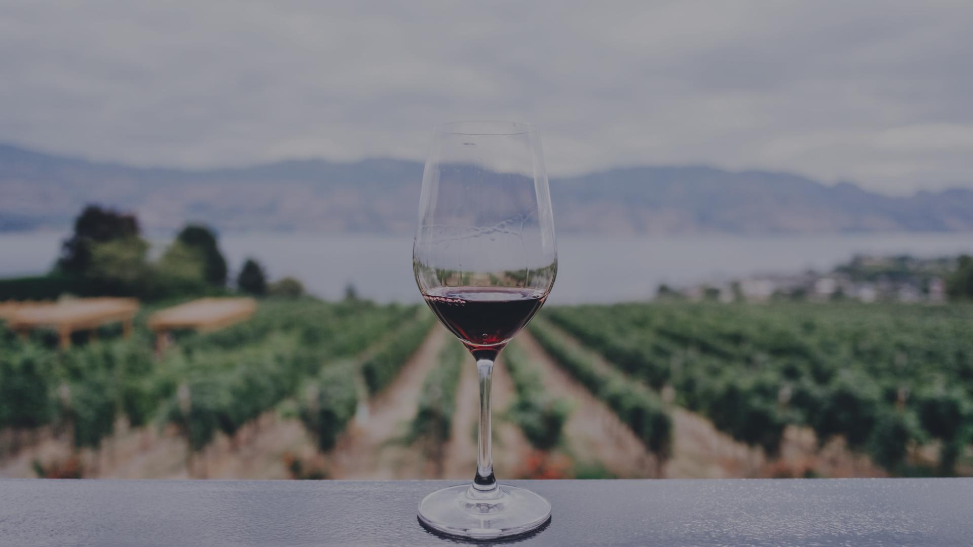 North and South Fork Limo Wine Tour